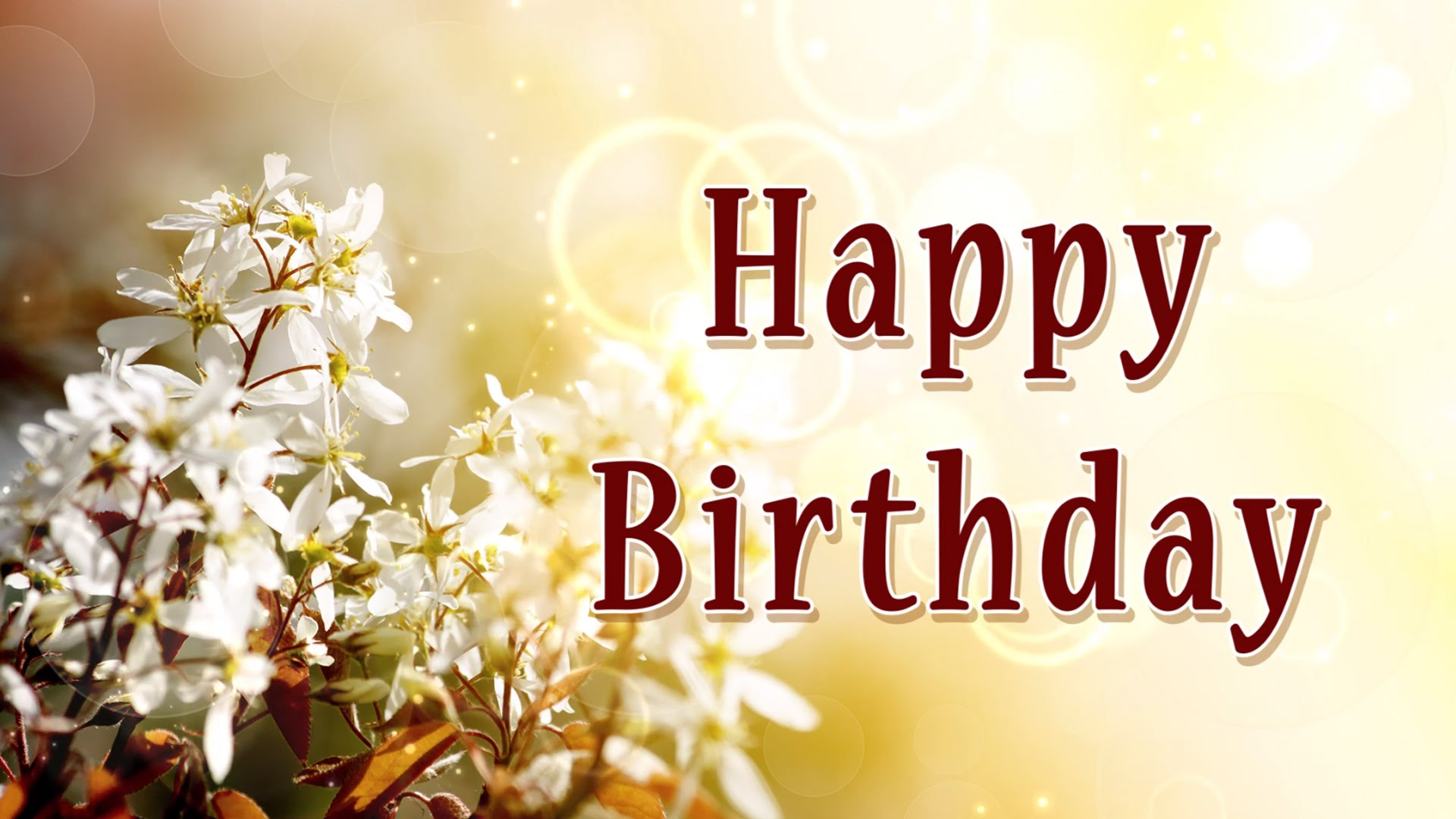 Happy Birthday Image With Beautiful White Flower Happy Birthday Flowers Background 678759 Hd Wallpaper Backgrounds Download