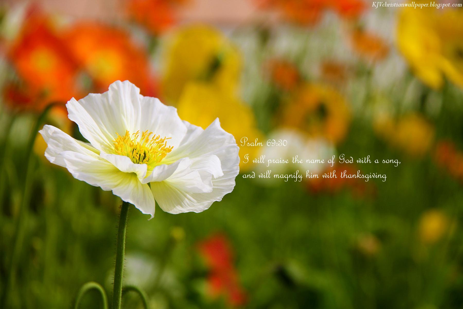 King Name Wallpaper - Christian Desktop Backgrounds Spring , HD Wallpaper & Backgrounds