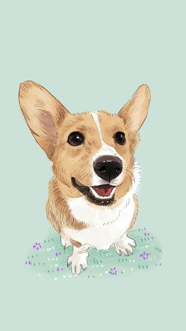 Papel De Parede Cachorro , HD Wallpaper & Backgrounds