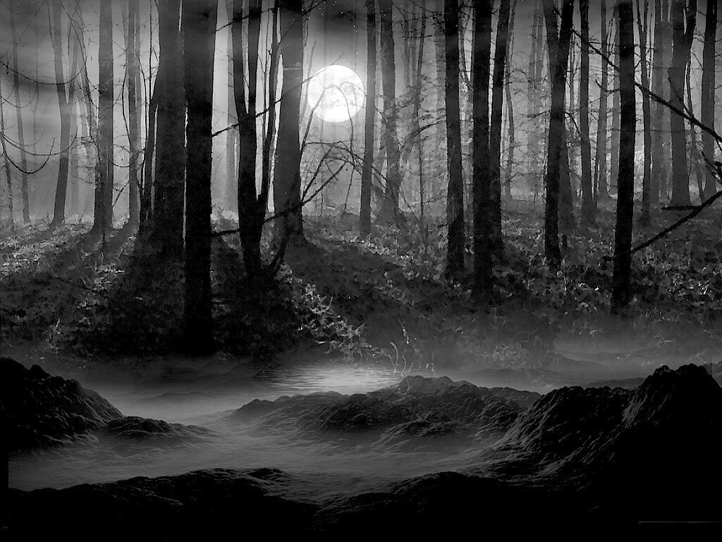 Black And White Pictures Anime Forest 34 Wide Wallpaper