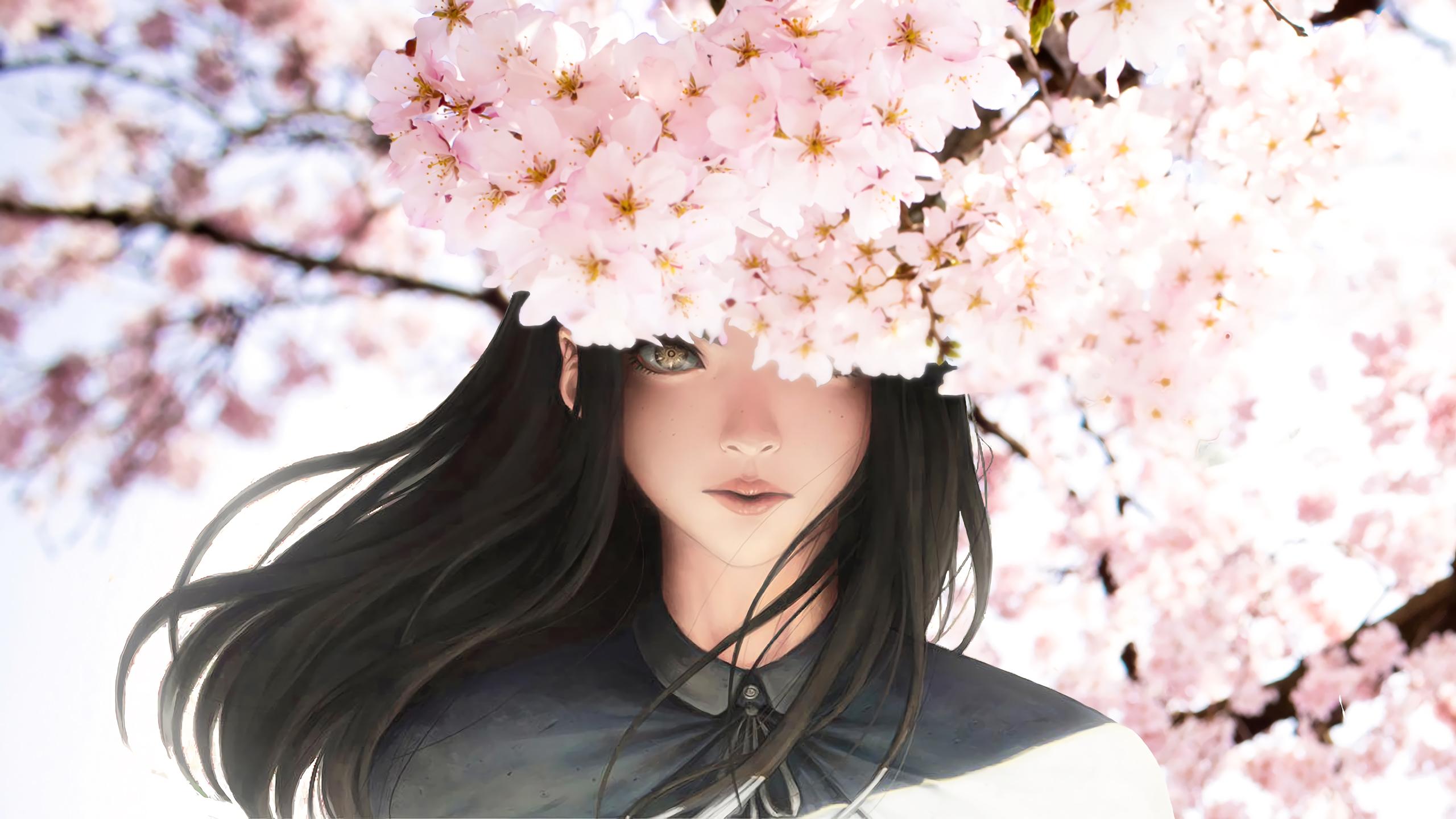 Beautiful Anime Girl - Cherry Blossom Beautiful Anime , HD Wallpaper & Backgrounds