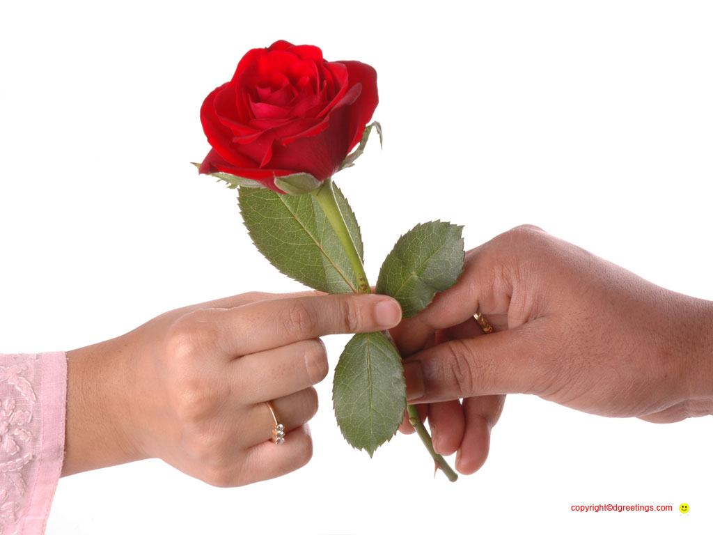 Wallpaper Download Free Image Search Flowers With Love Messages