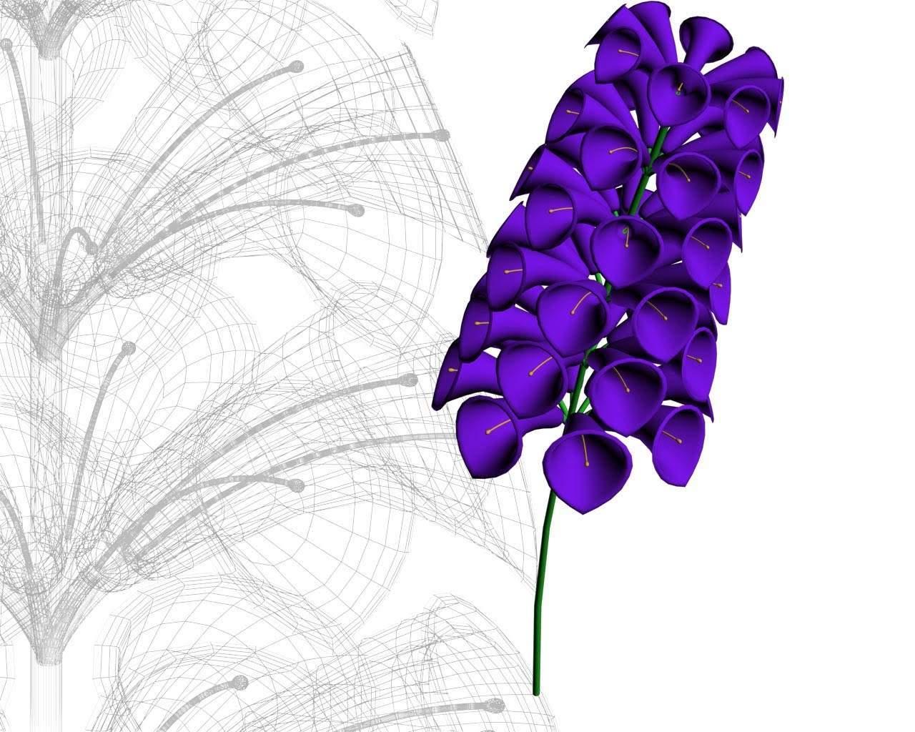 Gambar Bunga Mawar Putih Love Gambar Animasi Bunga