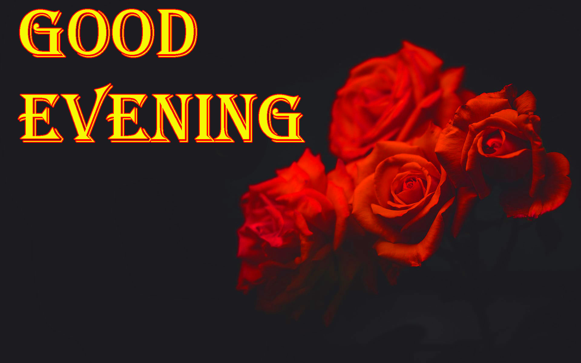 Good Evening Images For Lover - Good Evening Red Rose , HD Wallpaper & Backgrounds