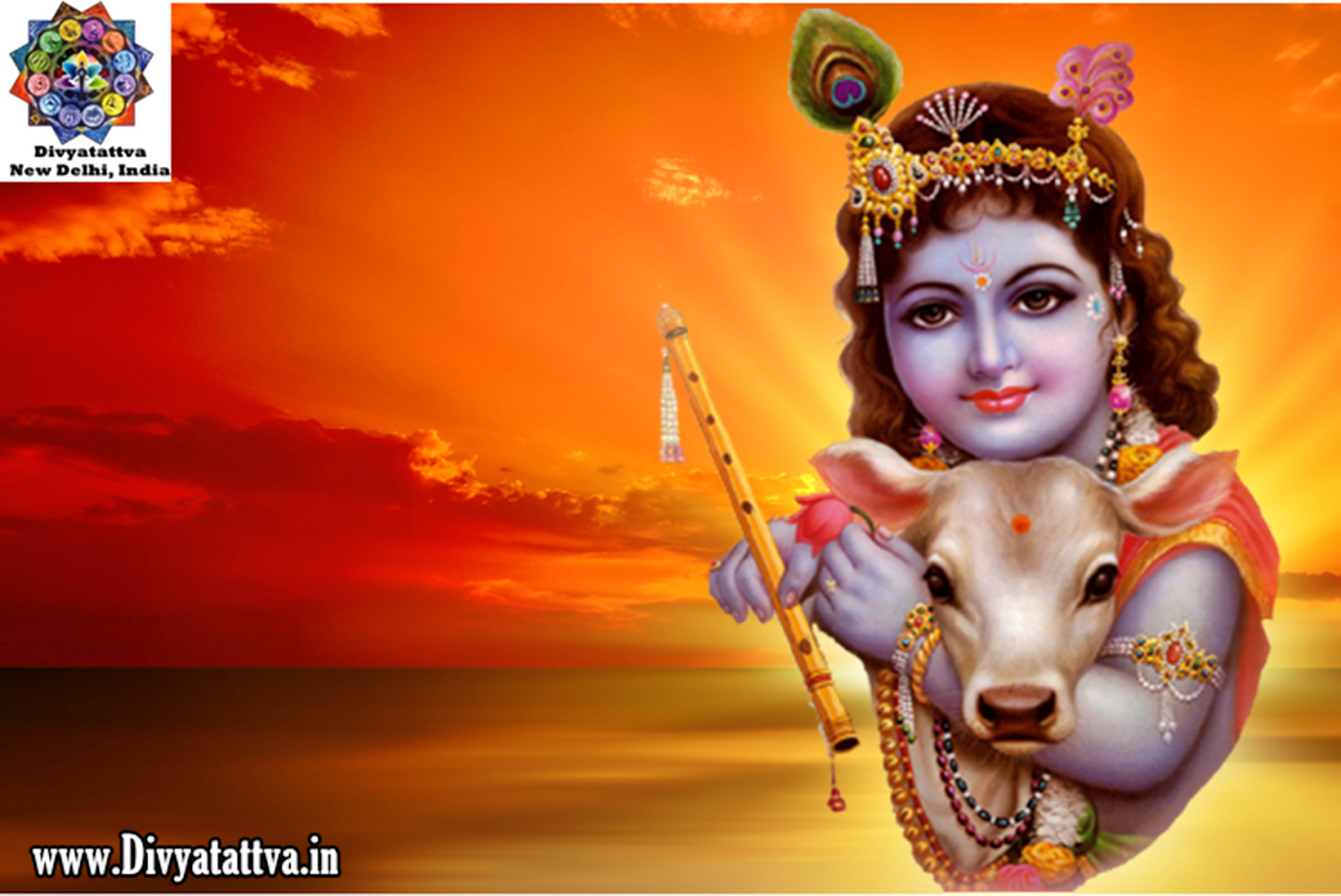 75 752010 radha krishna pictures hd wallpapers images free downloads