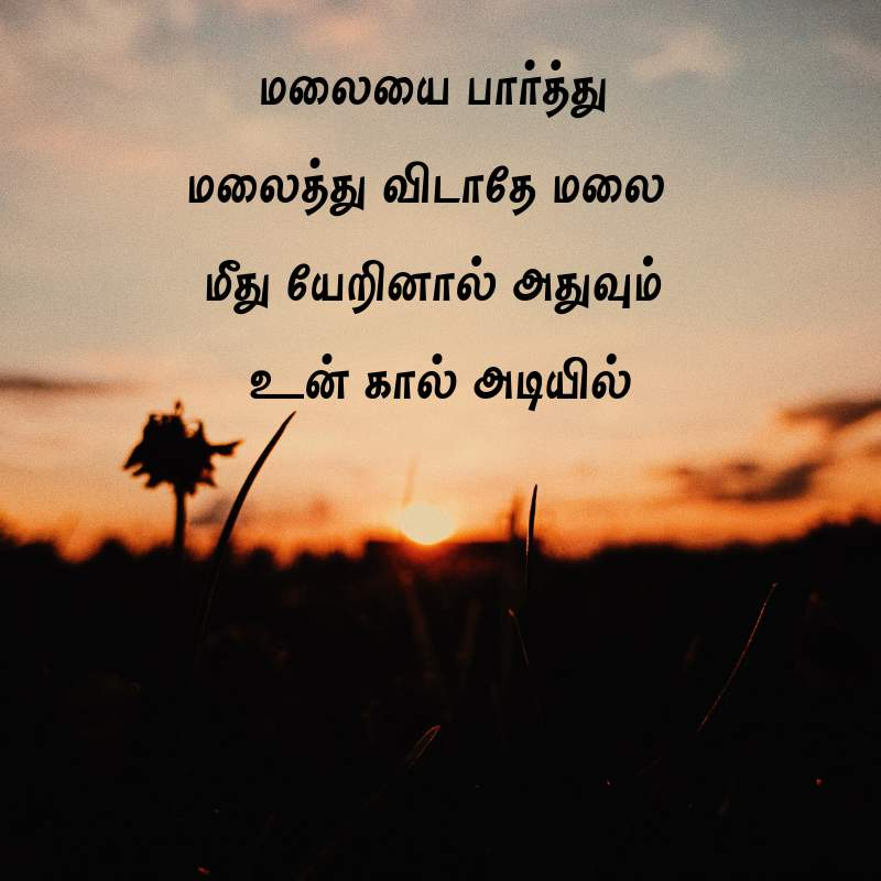292 Best Motivational Quotes In Tamil Images For Students Tamil Kavithaigal 780820 Hd Wallpaper Backgrounds Download