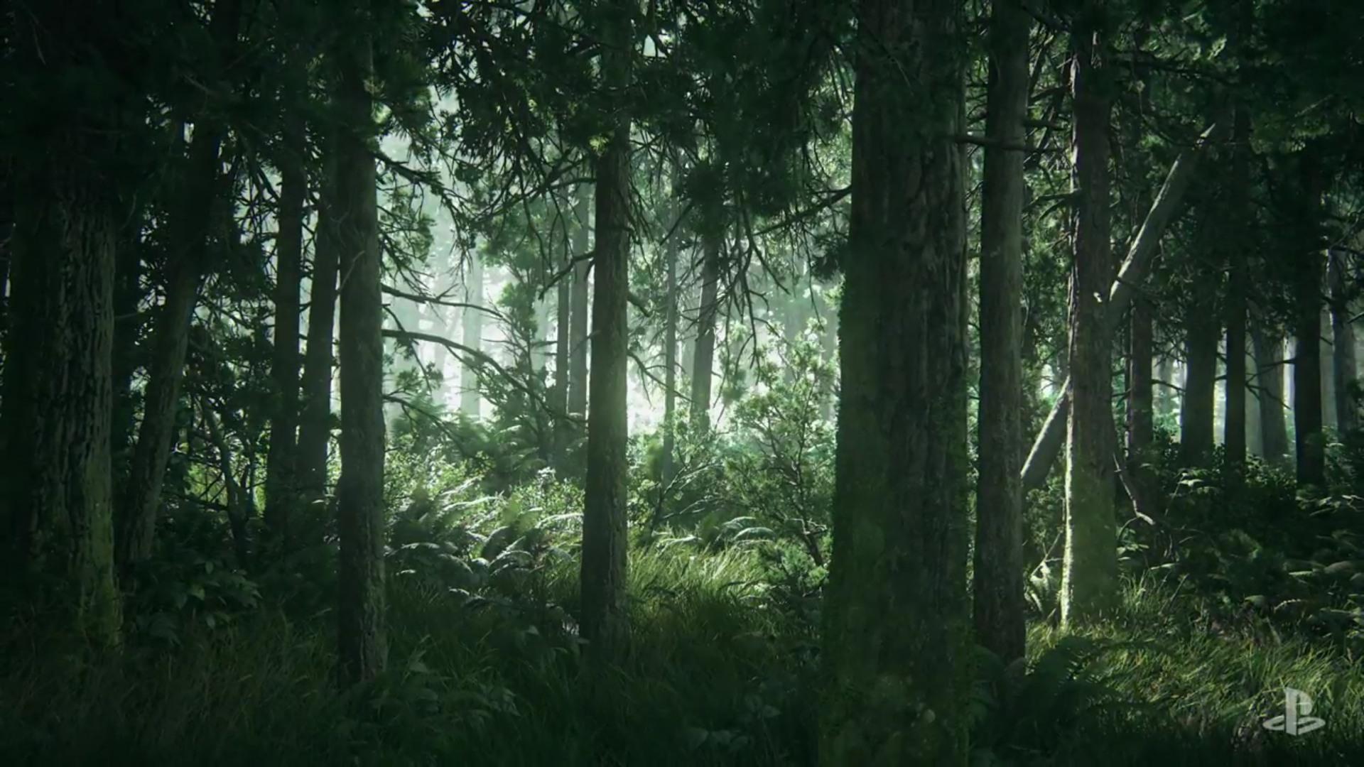The Last Of Us Part Ii Hd Wallpaper Hd - Background The Last Of Us 2 , HD Wallpaper & Backgrounds