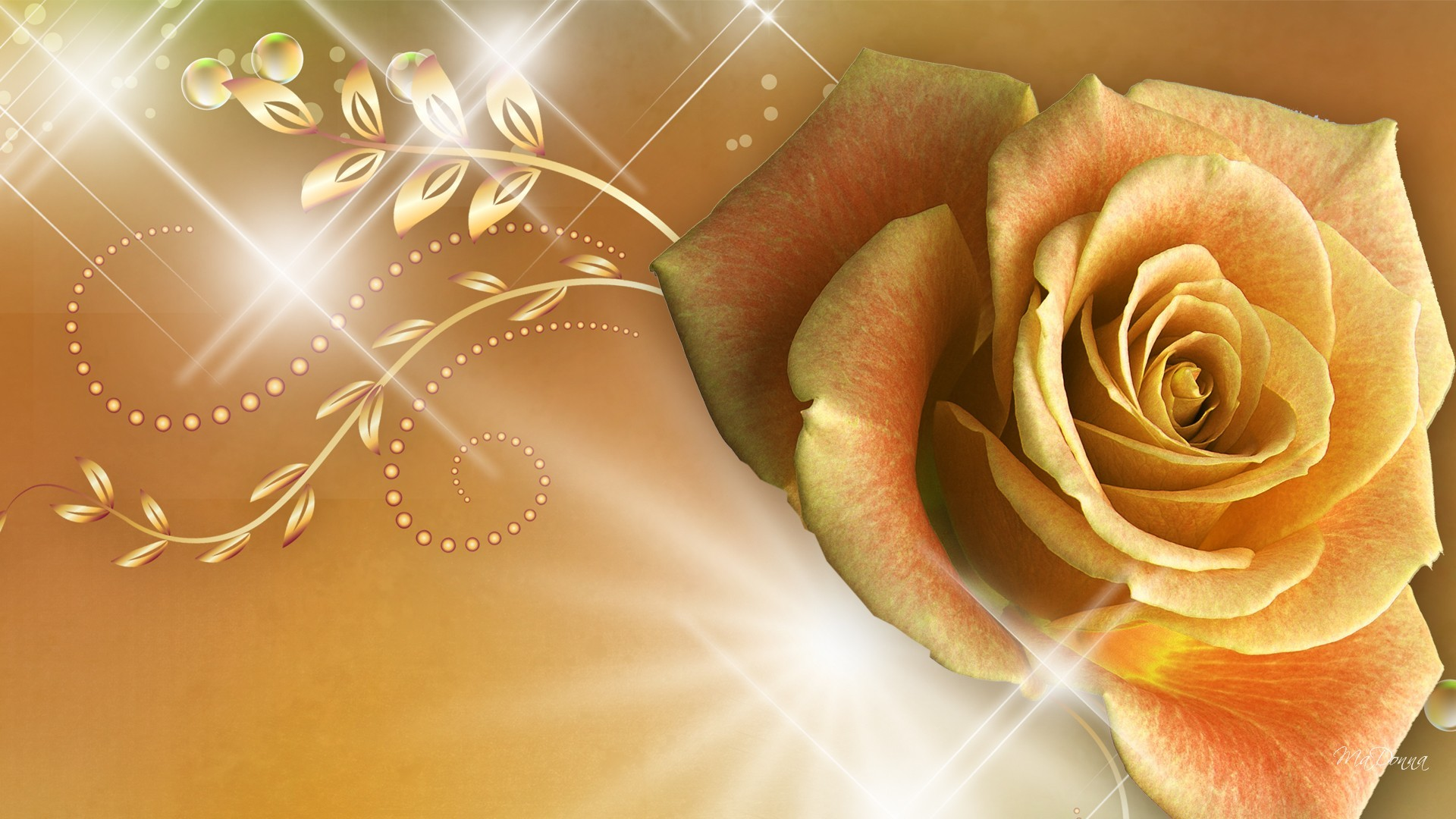 Rose , Rose Gold Roses Backgrounds (795303) , HD Wallpaper
