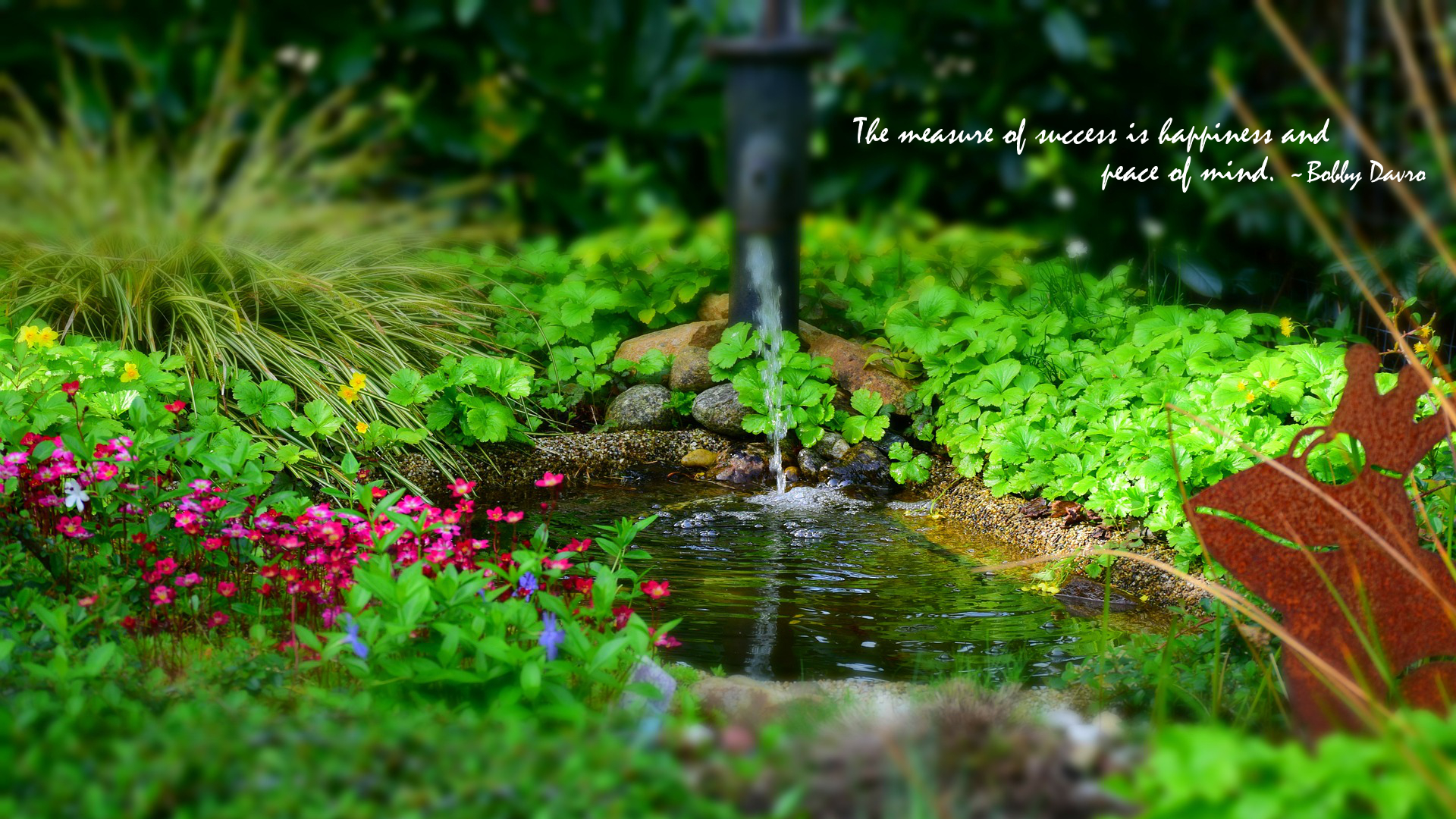 The Measure Of Success Is Happiness And Peace Of Mind - Ornement Au Bassin , HD Wallpaper & Backgrounds