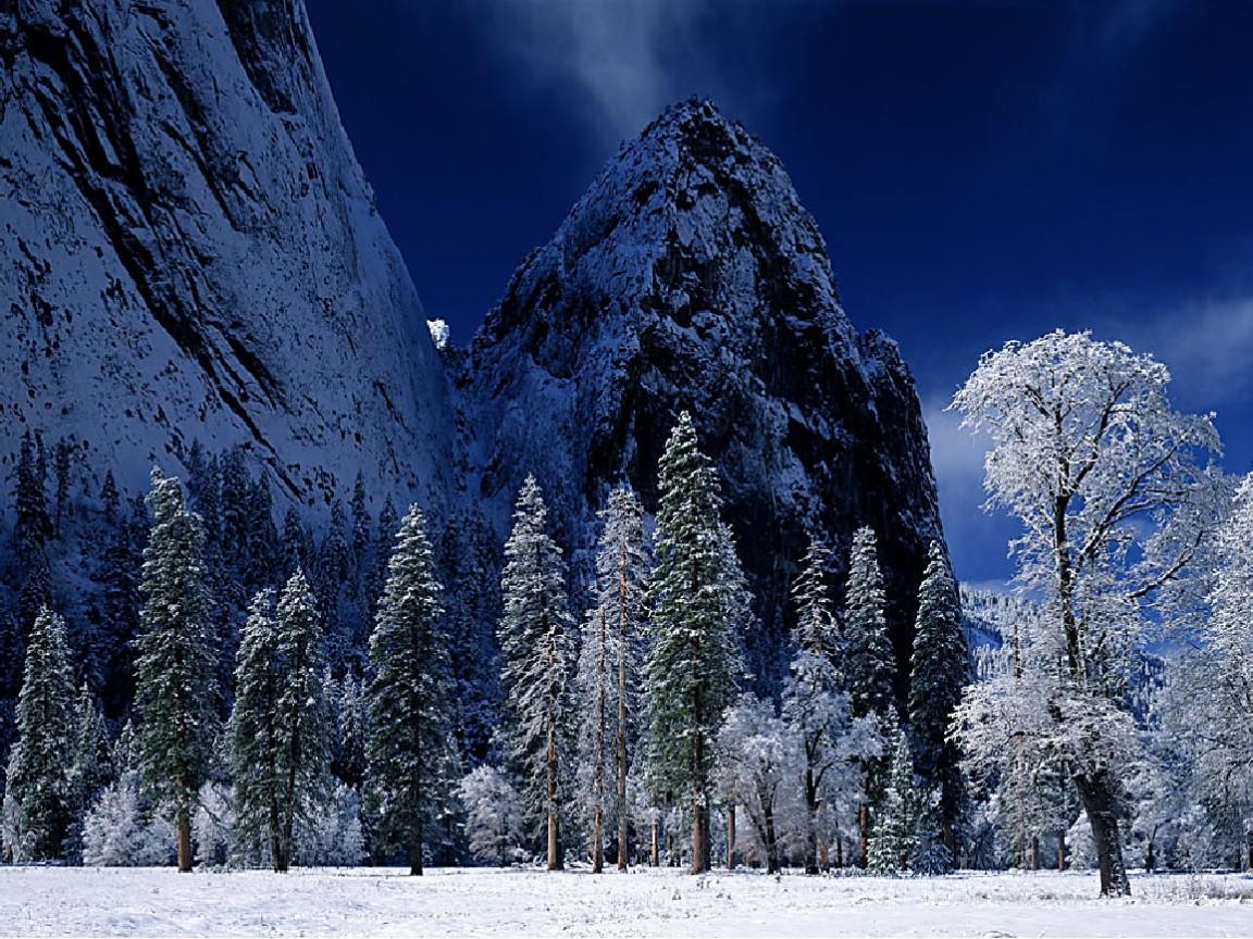 Clod Winter Snow Nature Season Ice Landscape Dark Trees