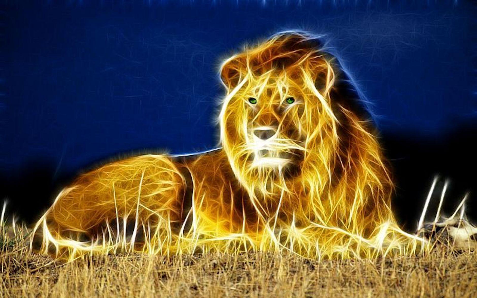 Nature Wallpaper - High Resolution Lion Wallpaper Hd , HD Wallpaper & Backgrounds