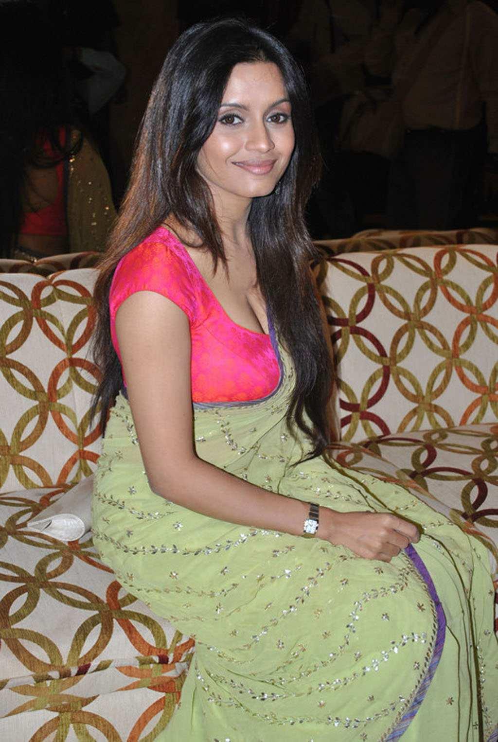 Bhavana Paani Spicy Saree Pics - Indian Actresses Boobs In Saree , HD Wallpaper & Backgrounds