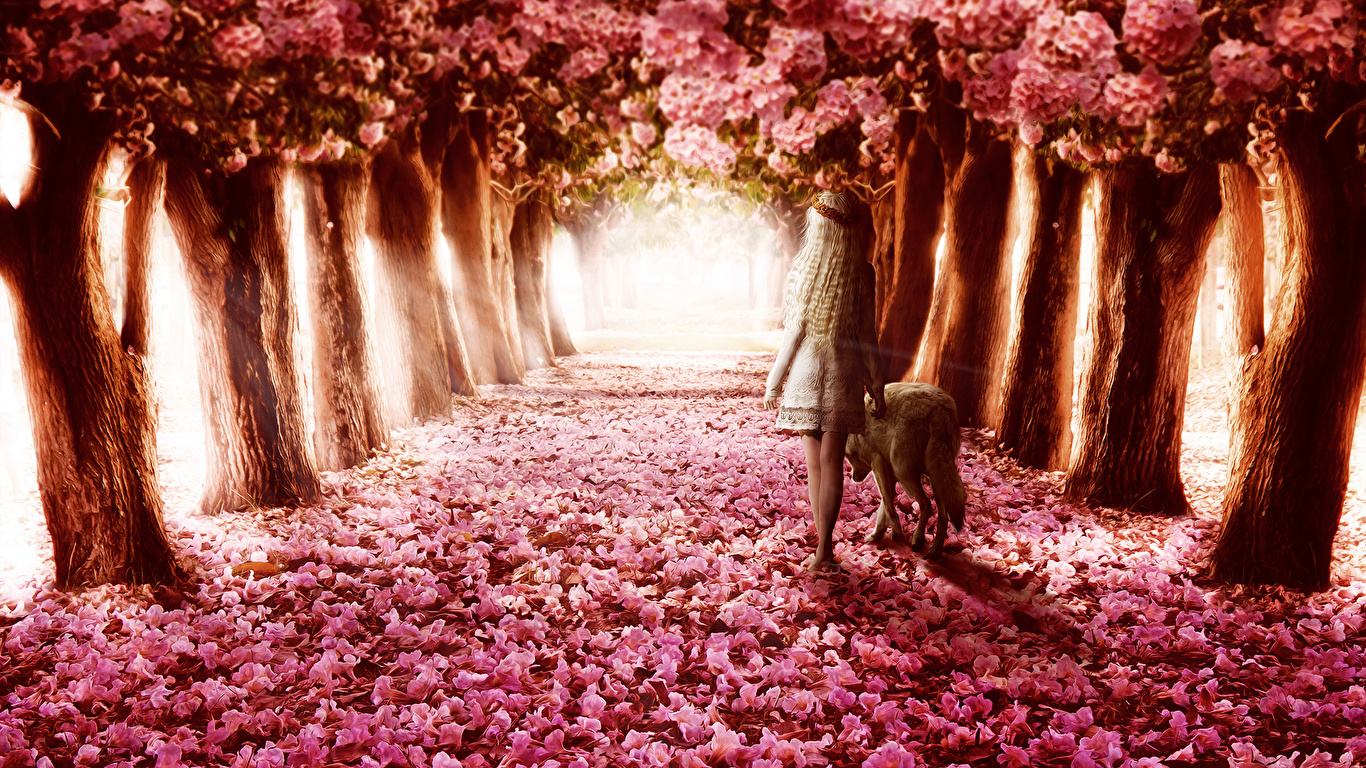 Stylishhdwallpapers Nature Flower Trees Path Wolf Girl - Flower Path , HD Wallpaper & Backgrounds