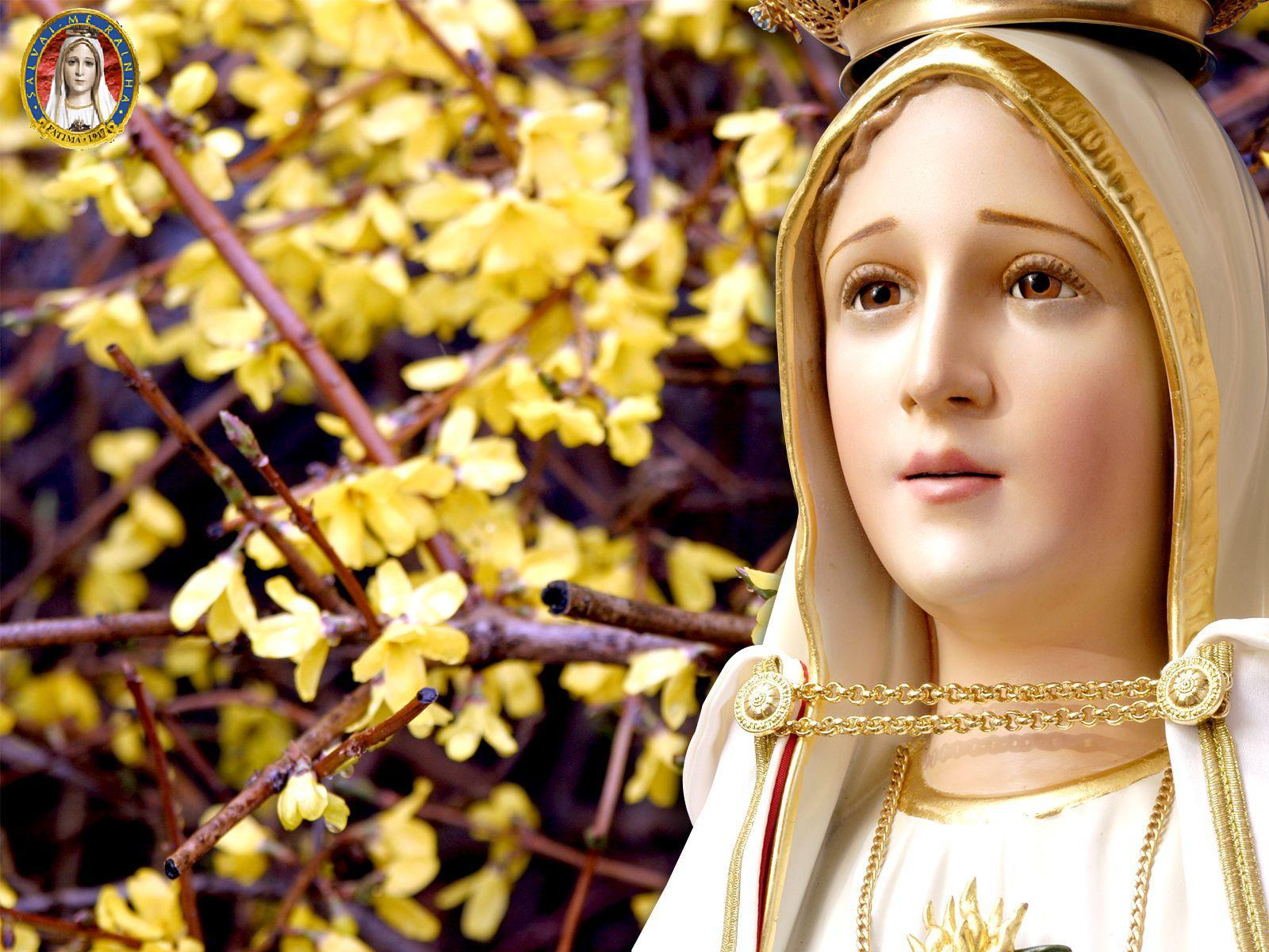 St Rita Of Cascia Beautiful 825879 Hd Wallpaper Backgrounds