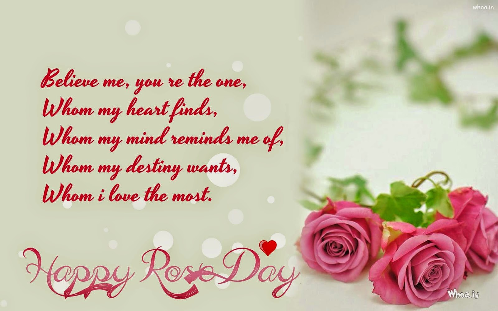 Rose Day 2019 Images - Boyfriend Rose Day Quotes , HD Wallpaper & Backgrounds