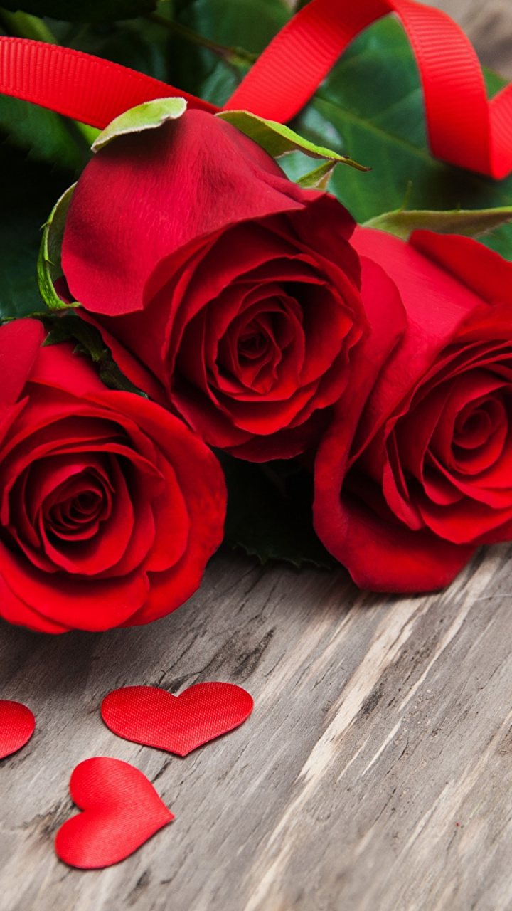 Heart Petal Love Rose Family Flower Hd Wallpaper Valentine
