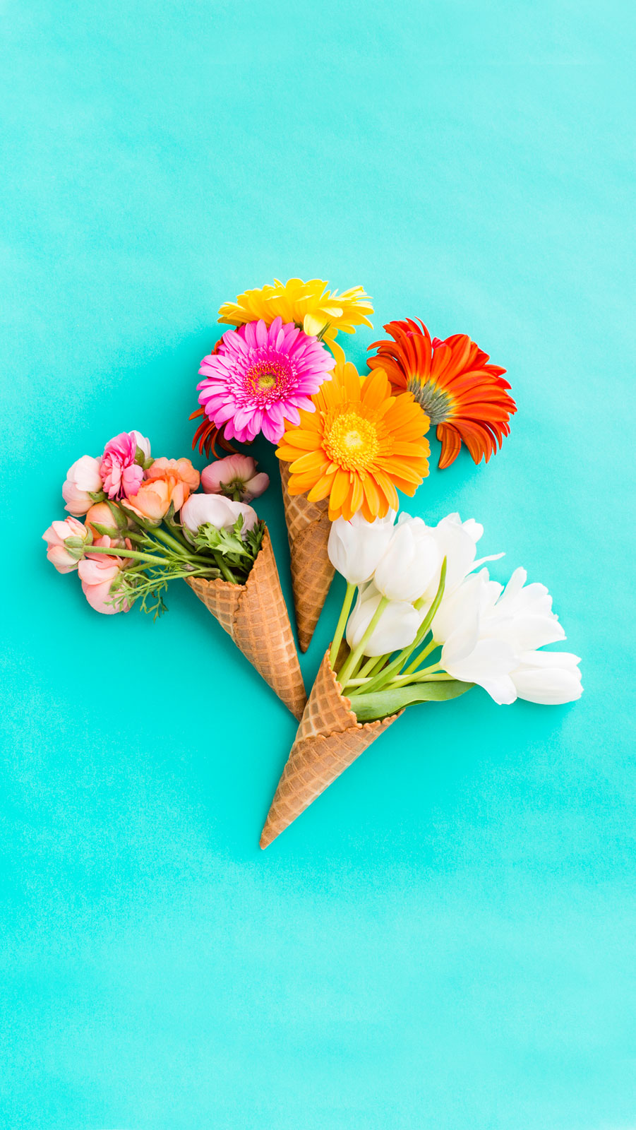 Download Flowers Raising The Roof - Flowers In Ice Cream Cones , HD Wallpaper & Backgrounds