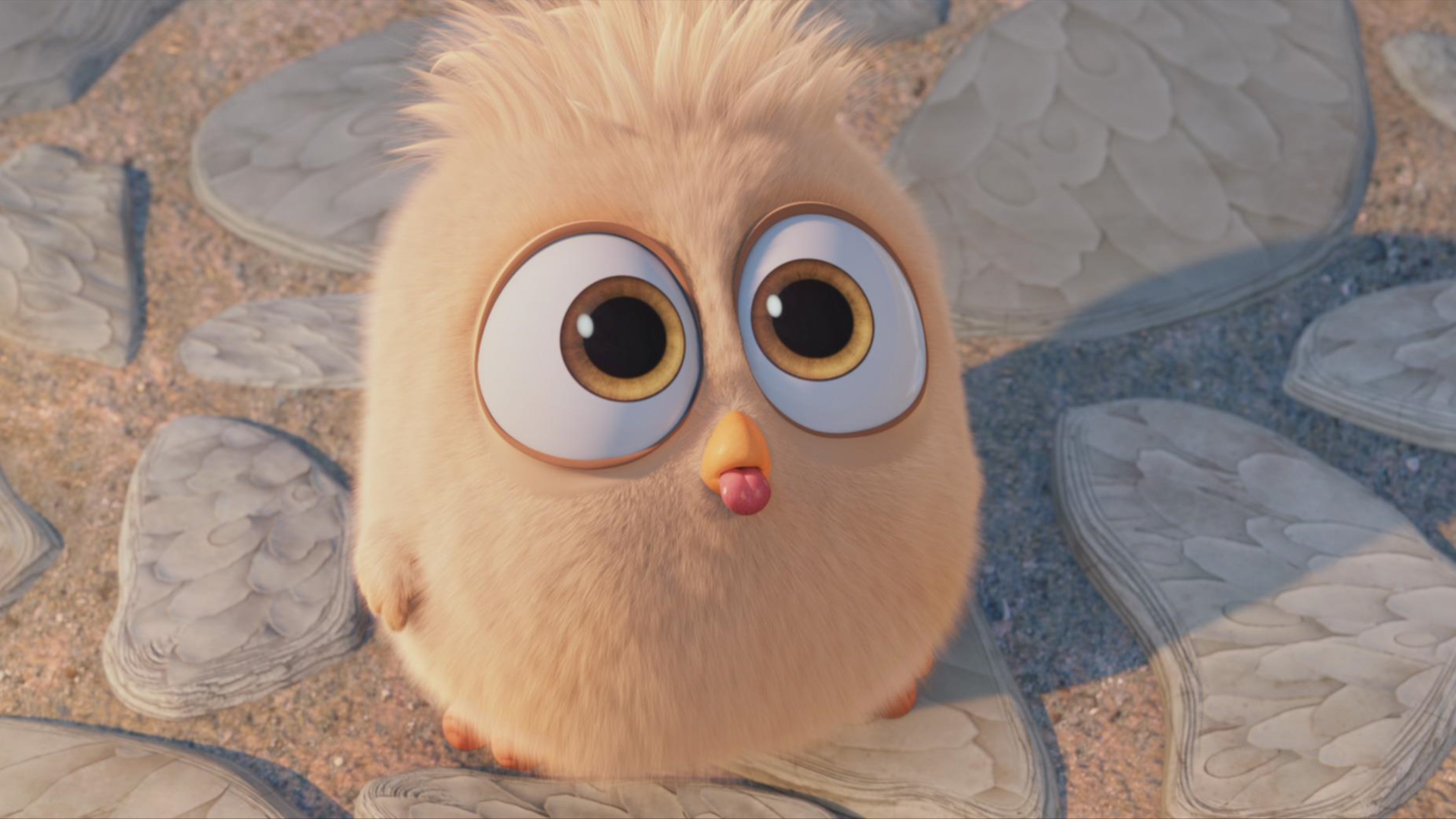 Hatchling In The Angry Birds Movie - Animated Gif Blowing Raspberry , HD Wallpaper & Backgrounds