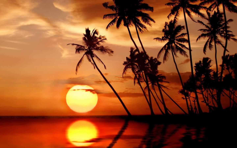 Macbook Air 13 Inch Wallpaper Size Tropical Beach Paradise