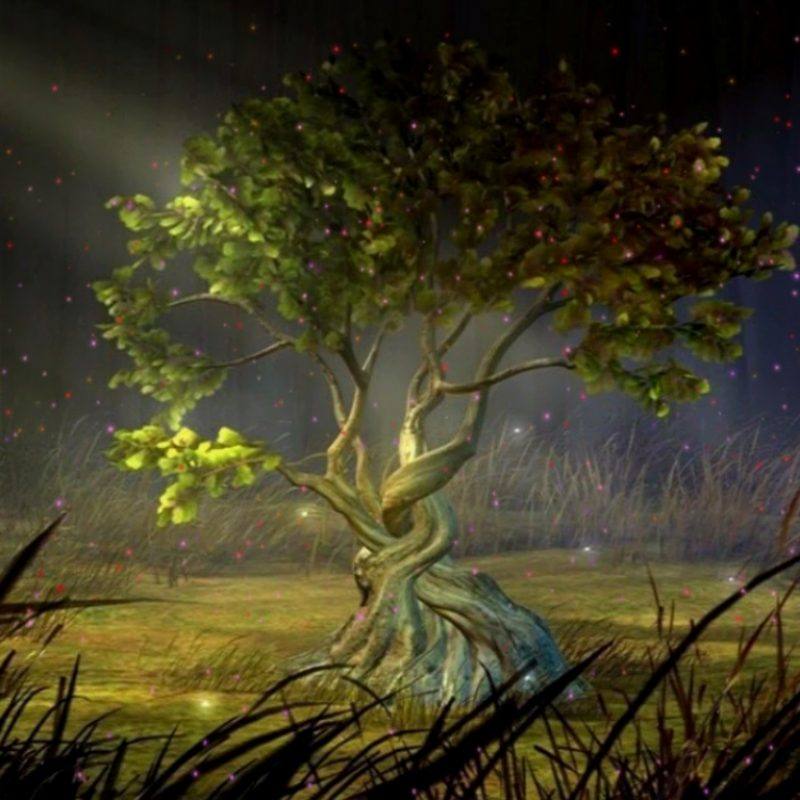 10 New Amazing 3d Animated Wallpapers Hd Full Hd 1080p Let