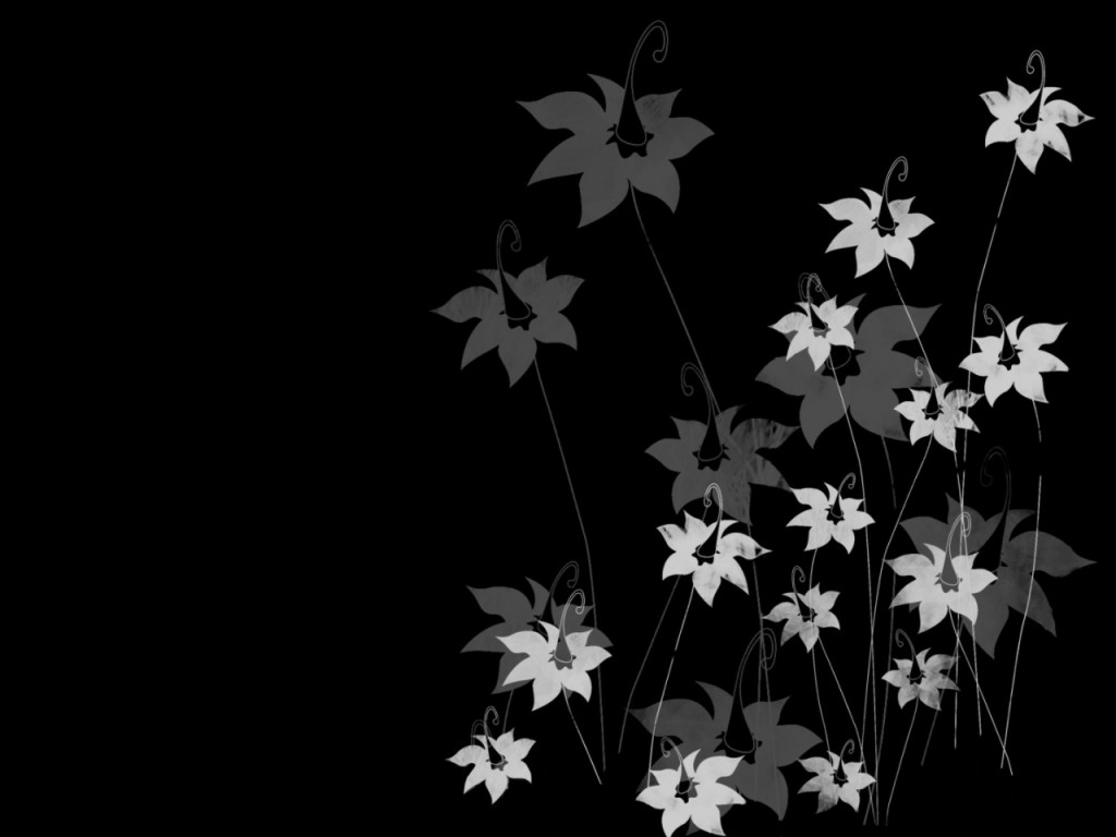 Black And White Flowers Widescreen Wall Flower Wallpaper Hd In Black Background 869014 Hd Wallpaper Backgrounds Download