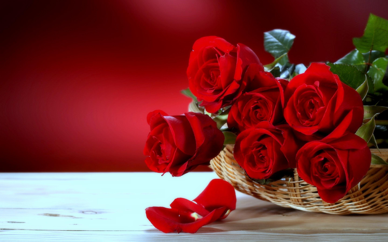 Red Roses Desktop Flowers Wallpaper - Most Beautiful Love Flowers , HD Wallpaper & Backgrounds