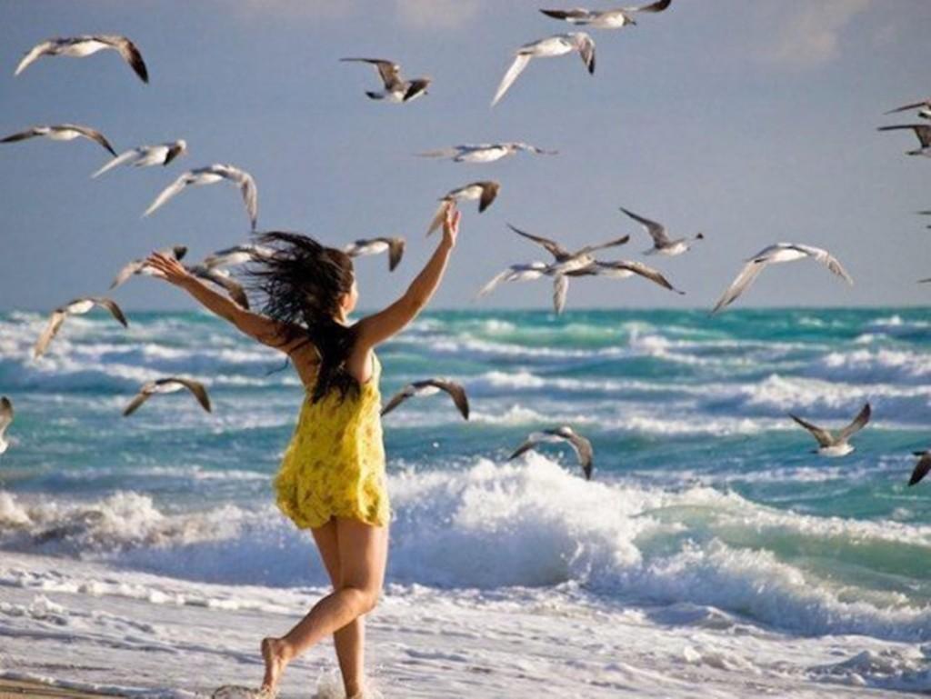 Beautiful Life Birds Feeling Sea Enjoy Freedom Beach - Am In Your Heart , HD Wallpaper & Backgrounds