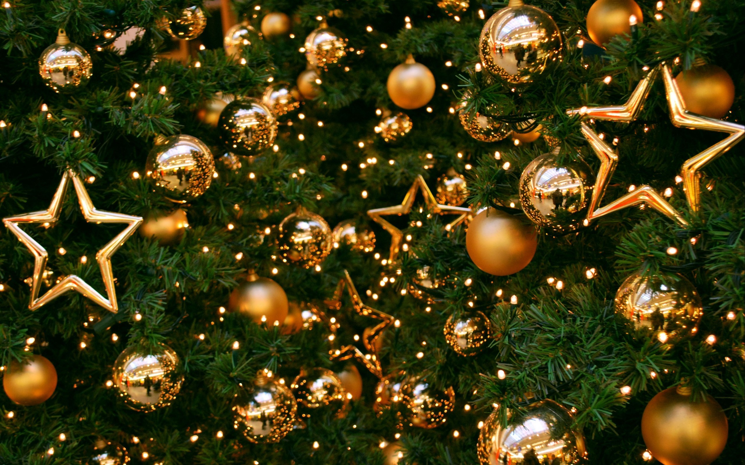 Best Christmas Tree Wallpaper - Christmas Tree New Year , HD Wallpaper & Backgrounds