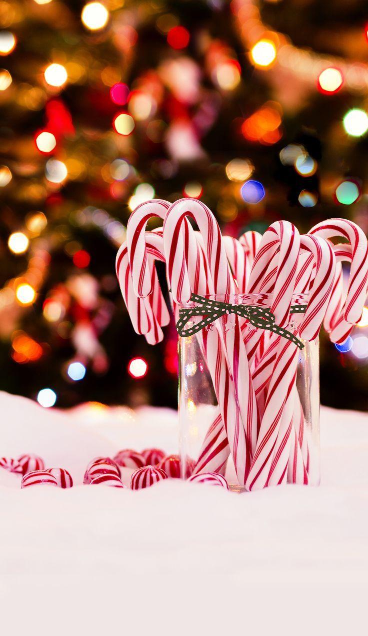Sfondi Natalizi Per Desktop Hd.Sfondi Natalizi Per Iphone Christmas Candy Cane Wallpaper Hd 883391 Hd Wallpaper Backgrounds Download