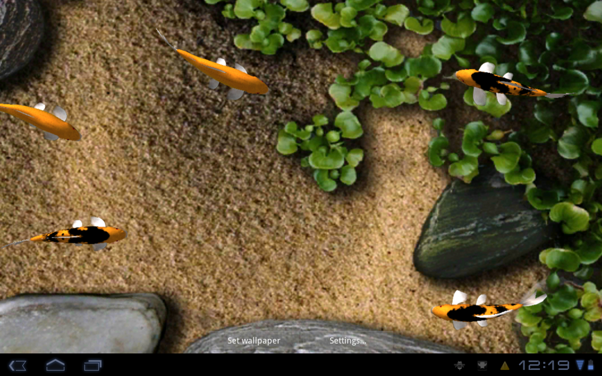 Koi Live Wallpaper Live Wallpaper For Smartphone 90293