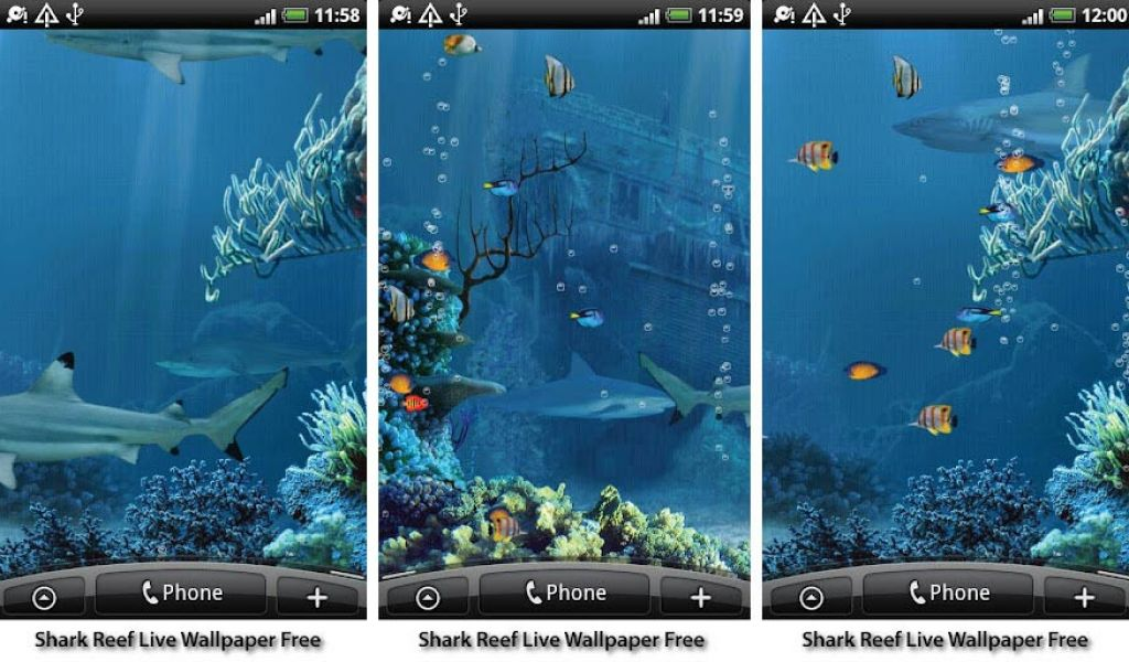 Fish Live Wallpapers For Android - Best Live Wallpapers For Android , HD Wallpaper & Backgrounds