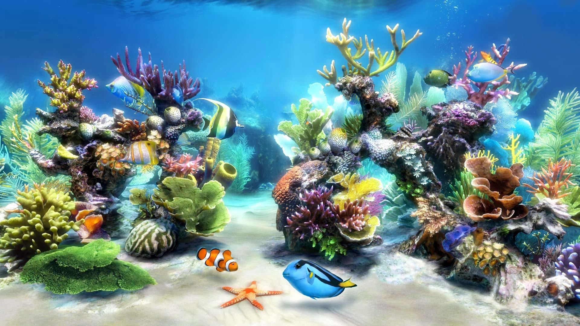 Fish Live Wallpaper Hd Live Wallpaper Windows 7 Aquarium