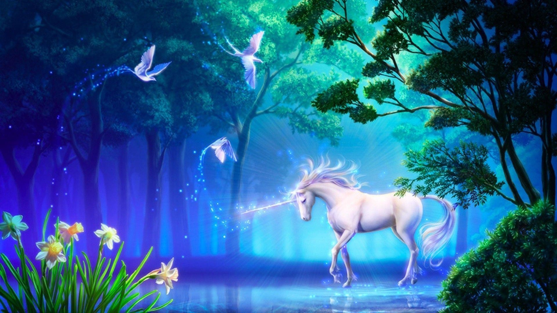 Unicorn Desktop Wallpaper - Unicorn In A Magic Forest , HD Wallpaper & Backgrounds
