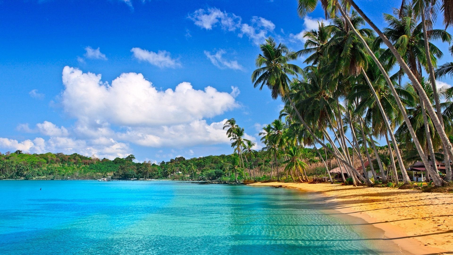 The Wallpaper Above Is Tropical Beach Hd Wallpaper (#94382) - HD ...