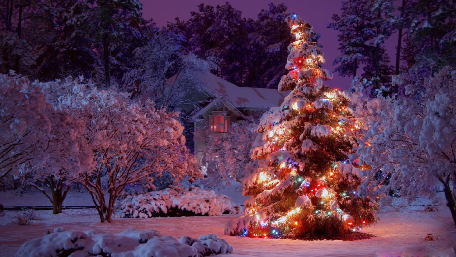 Winter Christmas Lights Beautiful Christmas Wallpaper