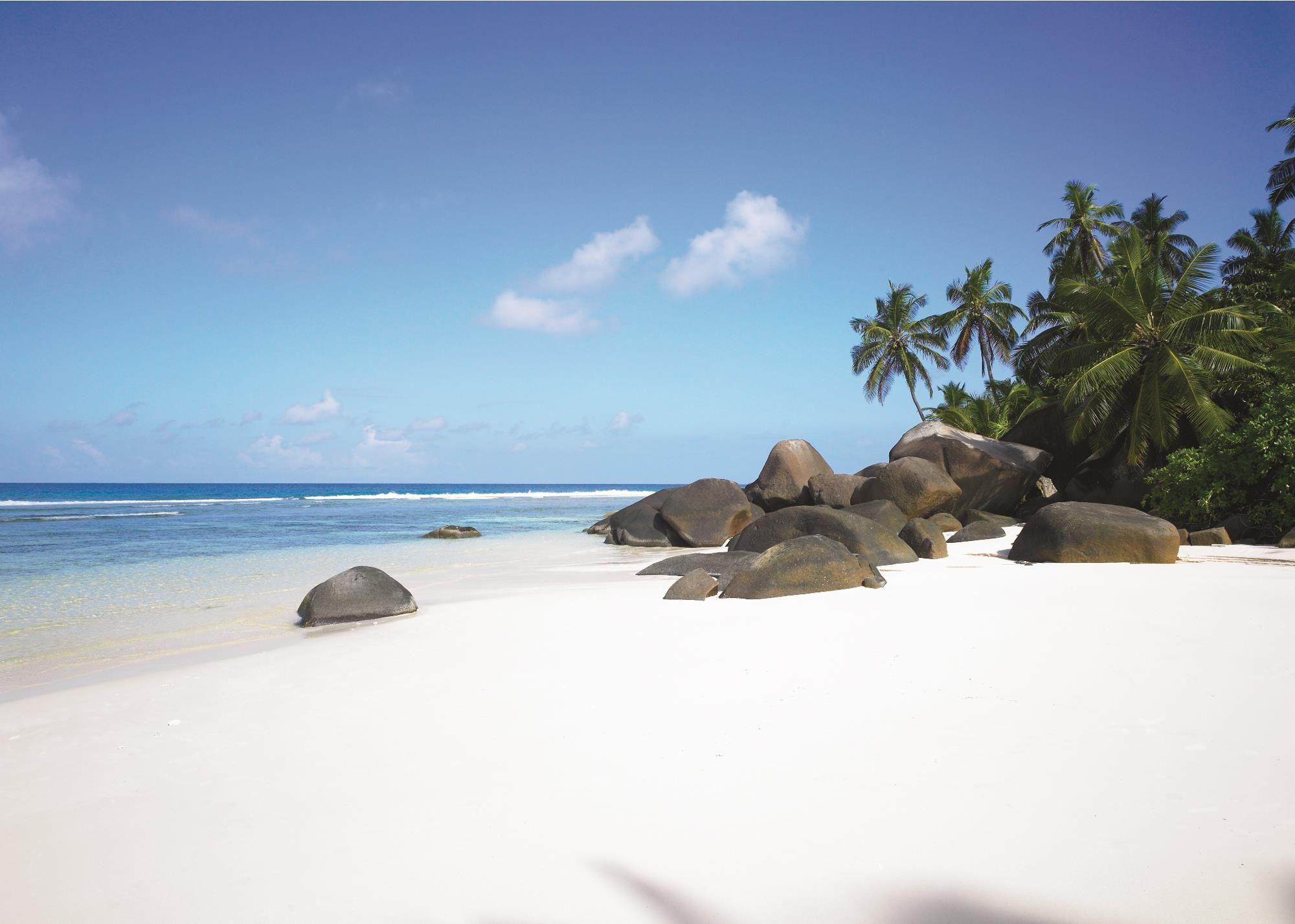Hd Paradise White S Beach Seychelles Wallpaper, Palm - Seychelles Hilton Labriz Beach , HD Wallpaper & Backgrounds