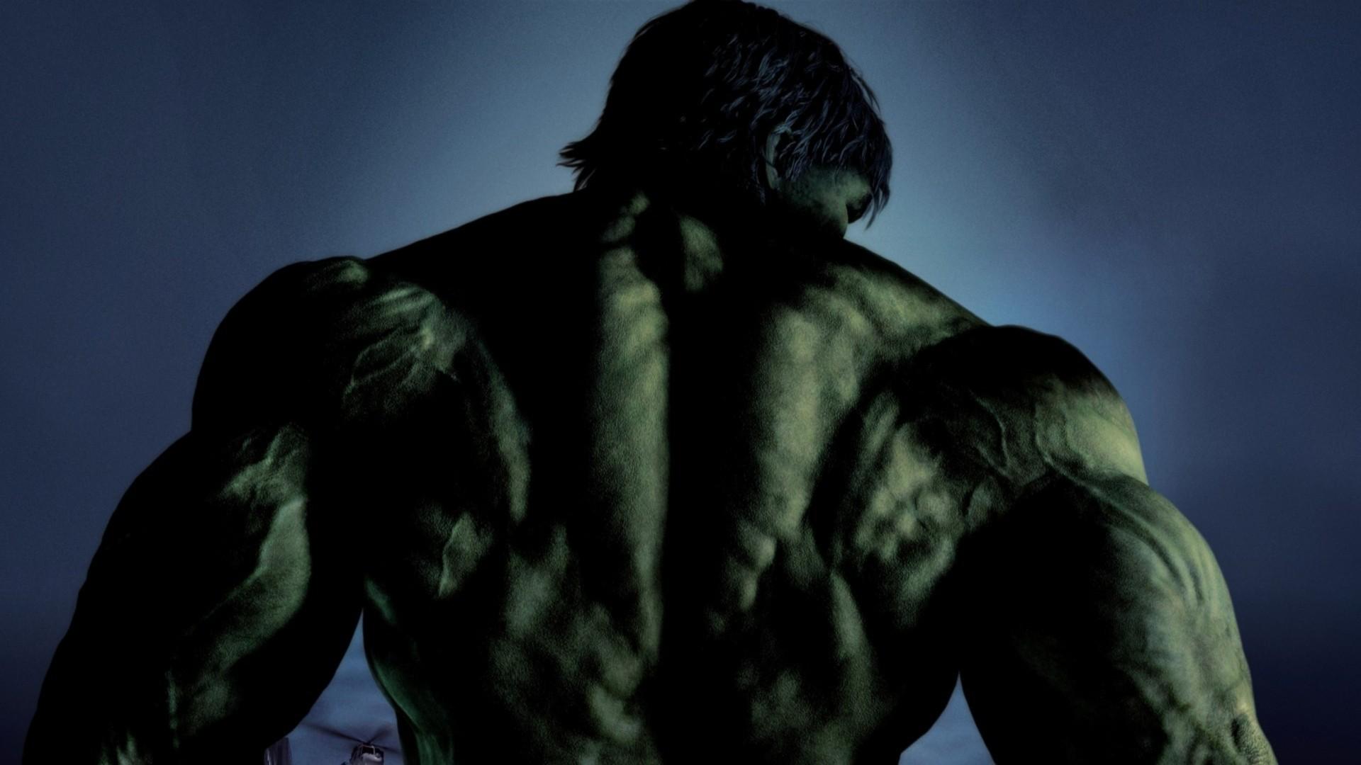 Hulk Incredible Hulk Back View 915600 Hd Wallpaper