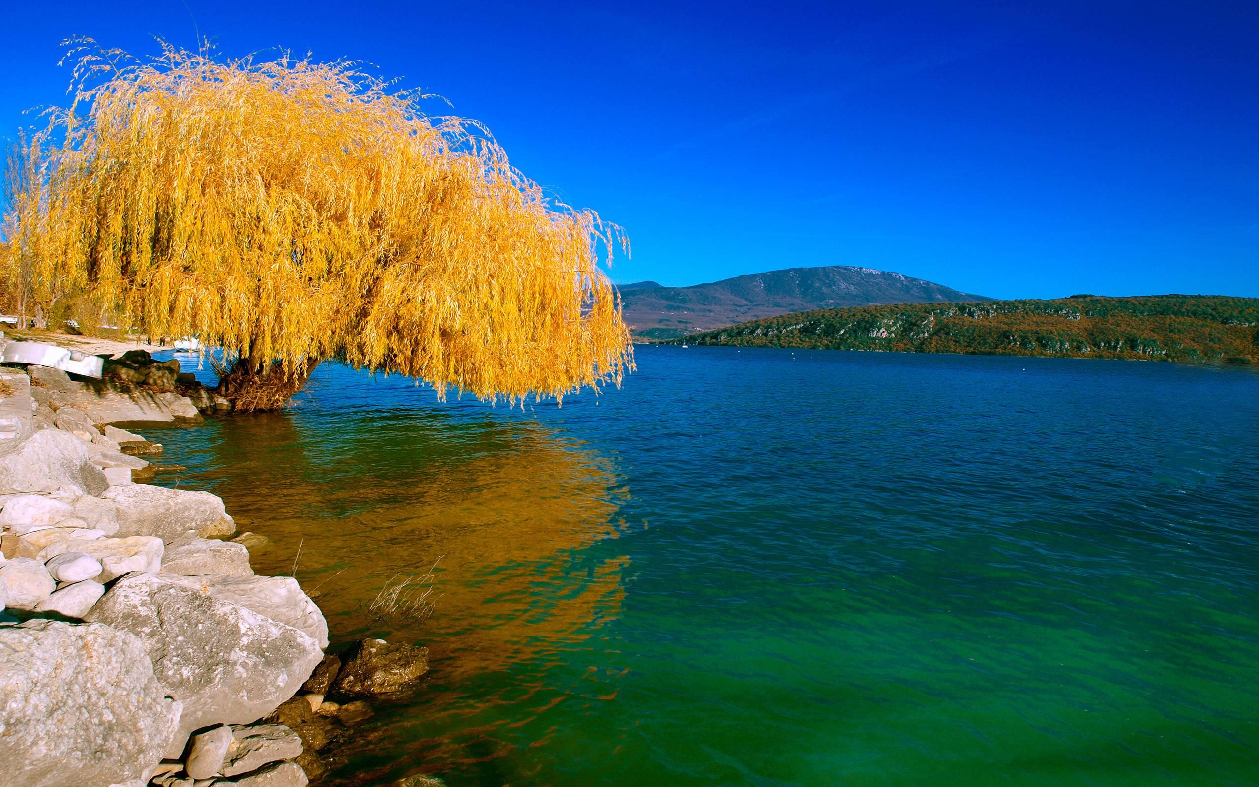 Nature Wallpaper Full Hd - Natural Scenery , HD Wallpaper & Backgrounds