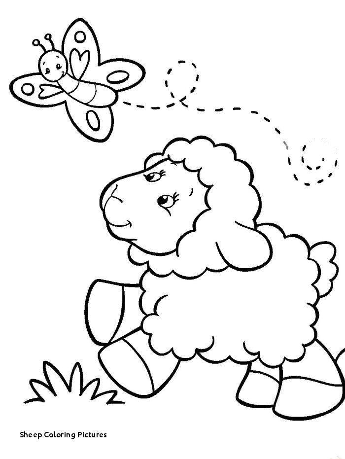 Lamb Of God Coloring Sheet Lovely Lamb Coloring Page ...