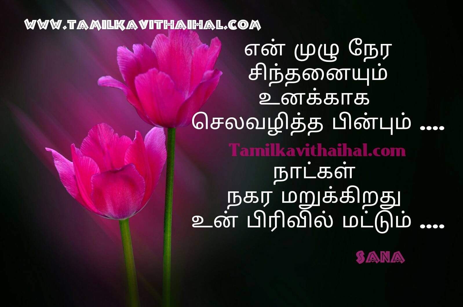 Real Life Love Quotes In Tamil With Pain Kavithai For