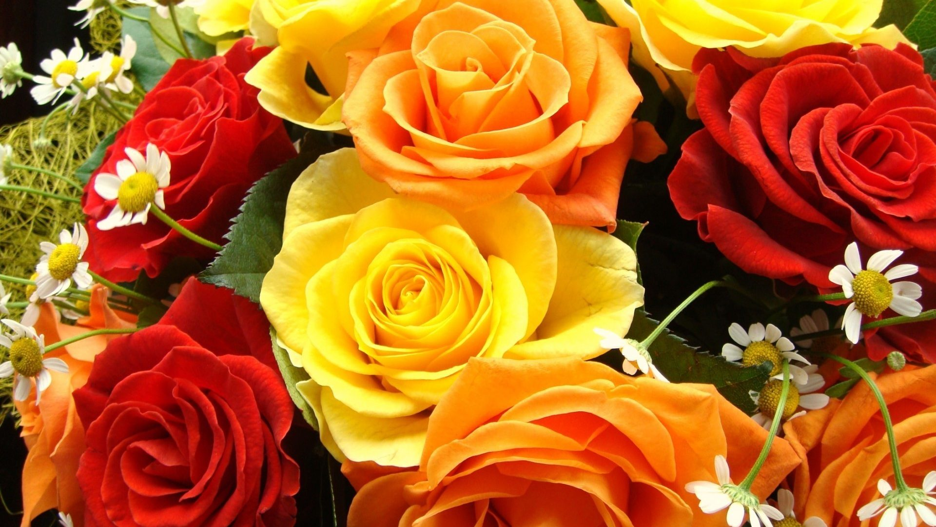 Colorful Rose Bouquet Widescreen Wallpapers - Yellow And Red Rose Hd , HD Wallpaper & Backgrounds
