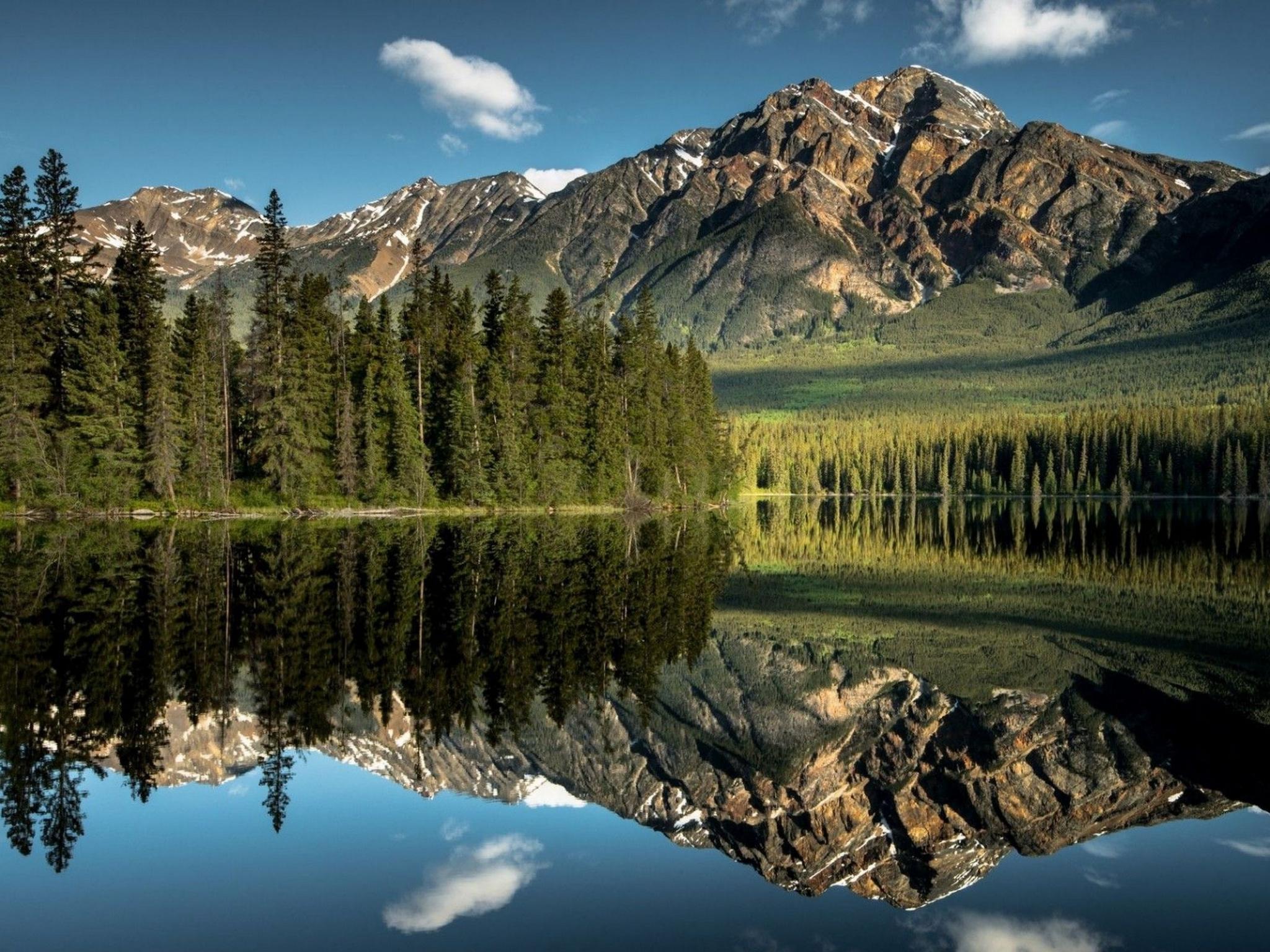 Jasper, National Park, Park, Sky, Mountain Wallpaper - Forest Mirror Water , HD Wallpaper & Backgrounds