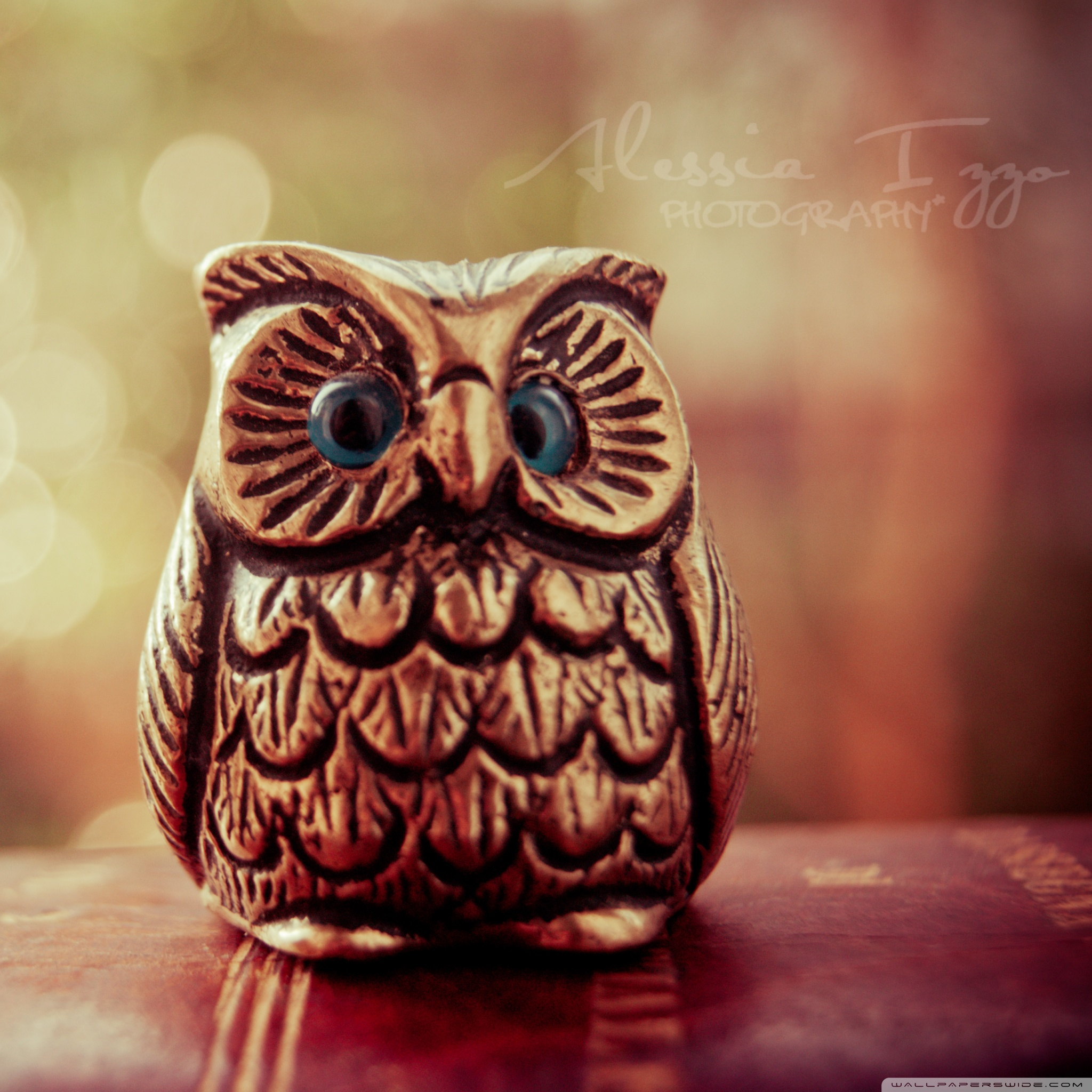 Ipad Cute Owl Wallpaper Hd For Tablet 949683 Hd