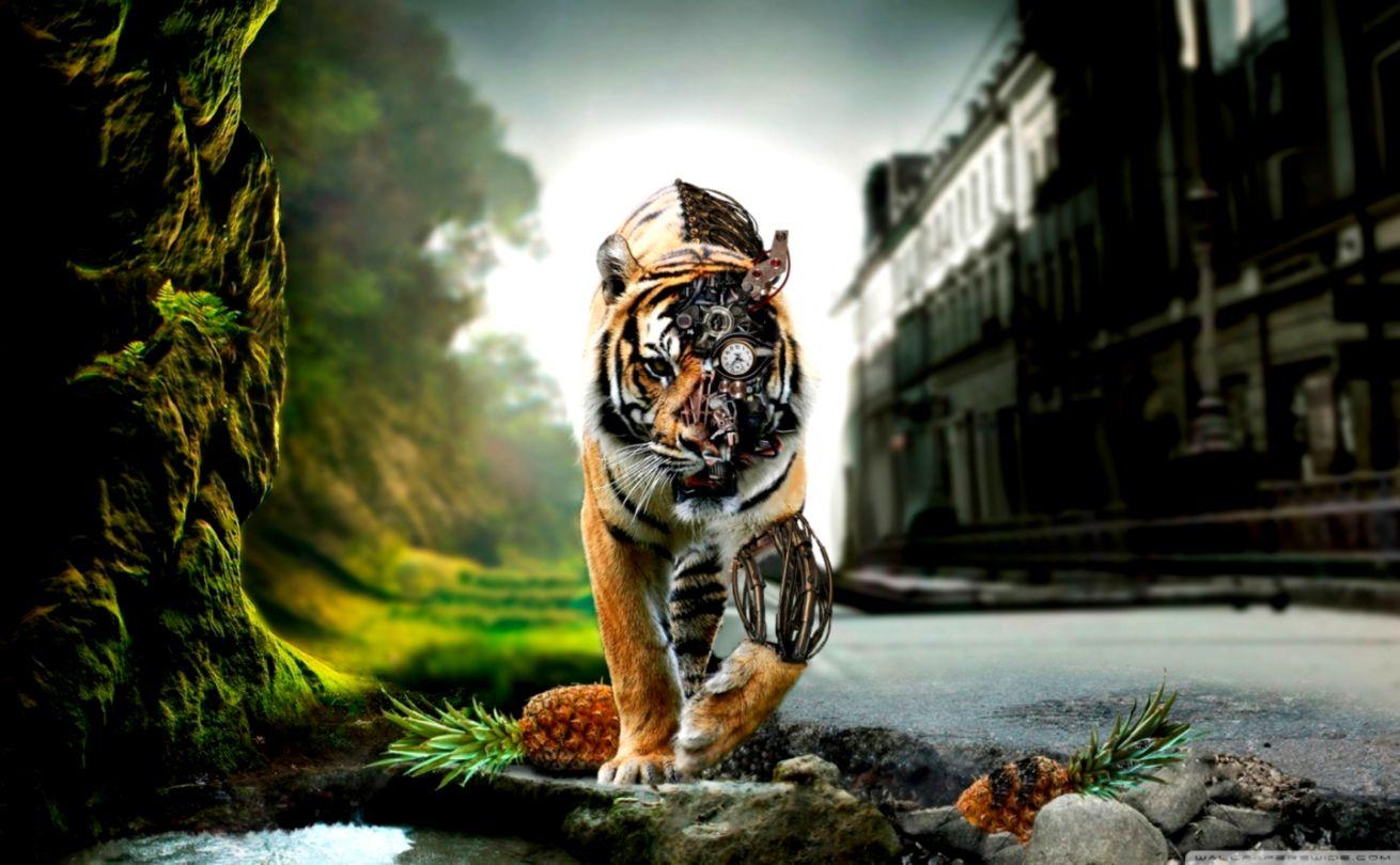 Amazing Lion ❤ 4k Hd Desktop Wallpaper For 4k Ultra - Adršpach-teplice Rocks , HD Wallpaper & Backgrounds