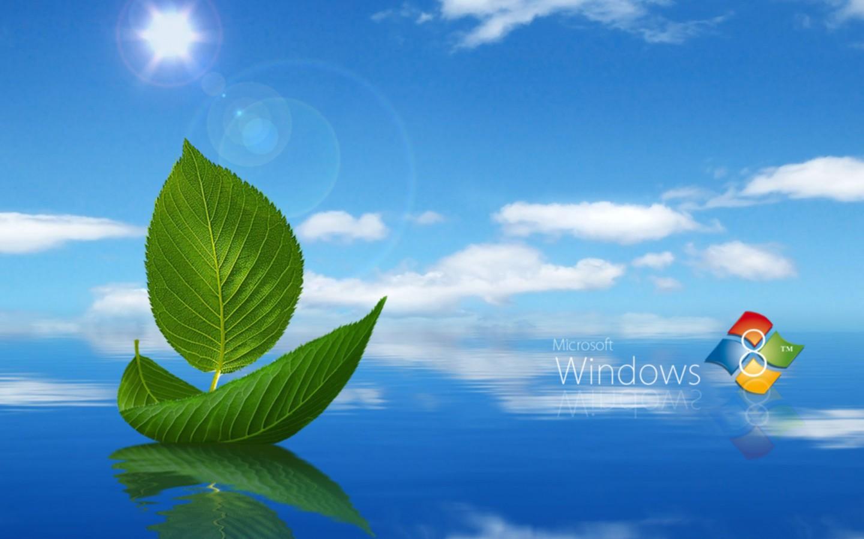 Windows Live Wallpaper Desktop Gallery - Barco Com Folha Verde , HD Wallpaper & Backgrounds
