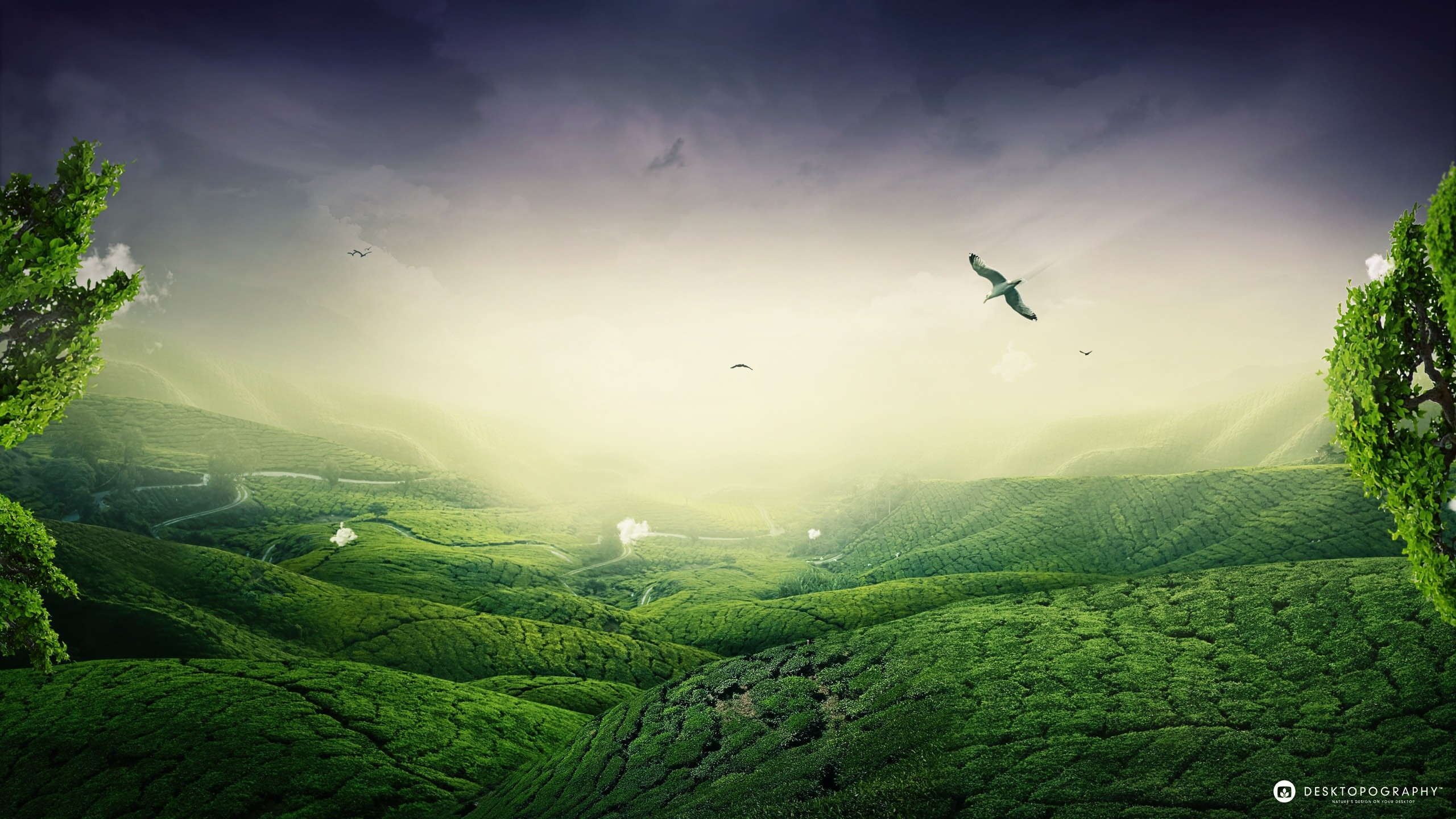 Hd Landscape Wallpapers Collection For Free Download - Hd Landscape , HD Wallpaper & Backgrounds