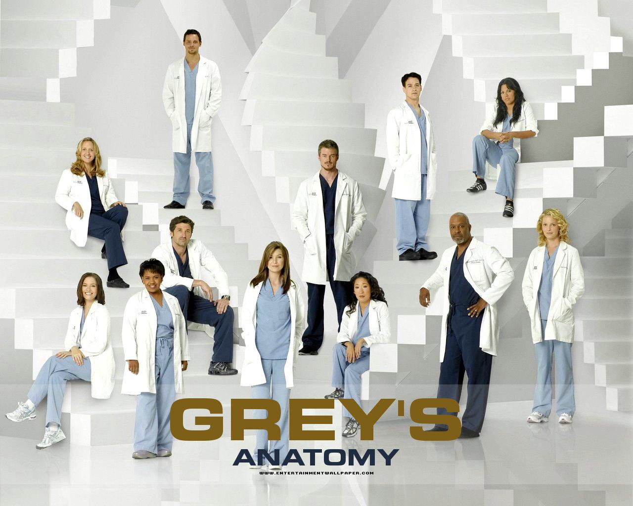Greys Anatomy Wallpaper Citations De Greys Anatomy