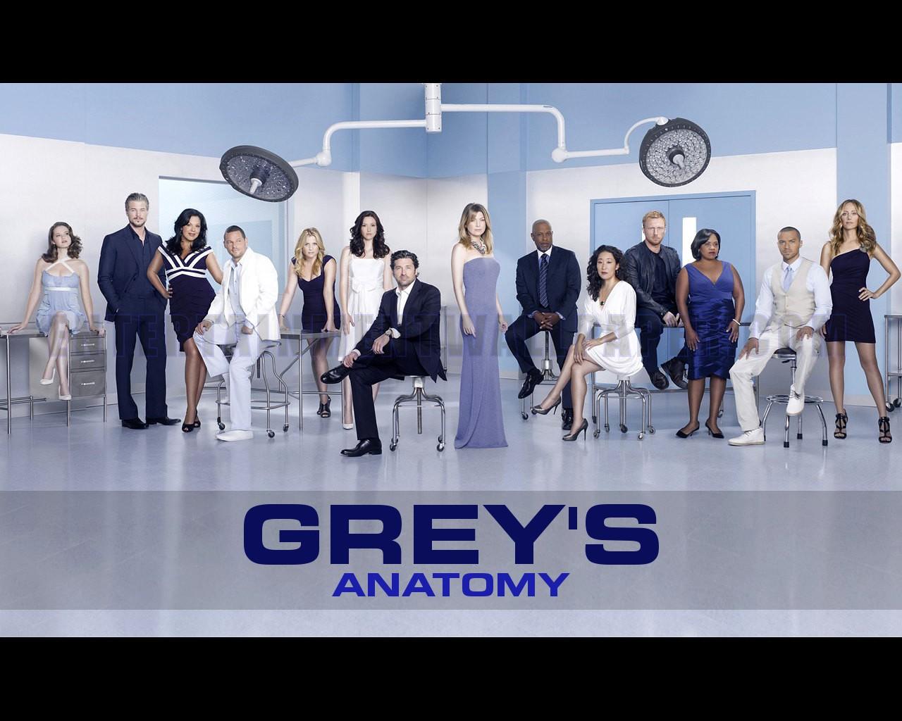 15 Temporada De Grey's Anatomy Assistir grey's anatomy wallpaper - greys anatomy cast season 7