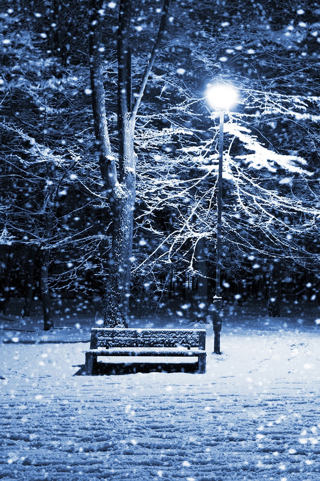 Snowy Night Iphone Wallpaper Winter Wallpaper Hd Iphone 5 984708 Hd Wallpaper Backgrounds Download