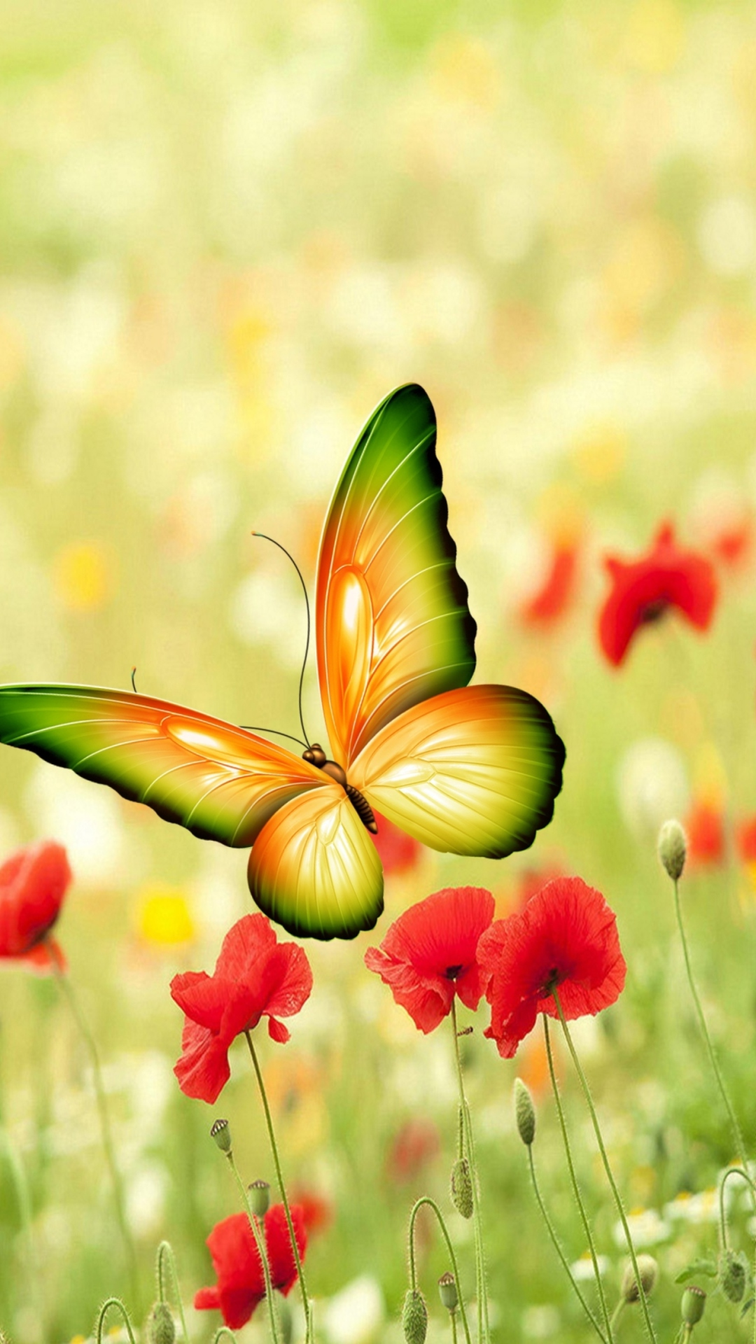 0 Flower Iphoneplus Wallpapers Hd Free Download Butterfly - Butterfly Images Wallpaper Hd , HD Wallpaper & Backgrounds